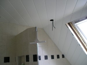 Badkamer Plafond Afzuiging : Plafonds